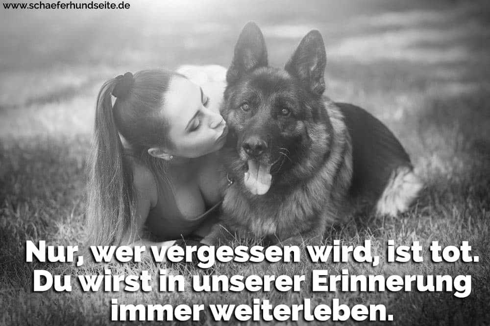 Eine Frau küsst ihren Schäferhund