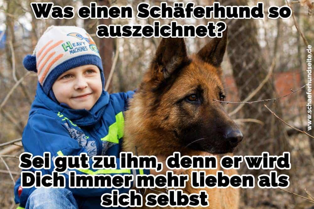 Der Junge umarmt seinen Schäferhund