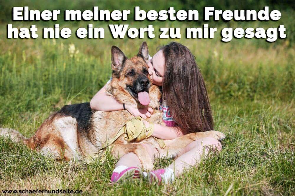 die junge Frau küsst ihren Schäferhund