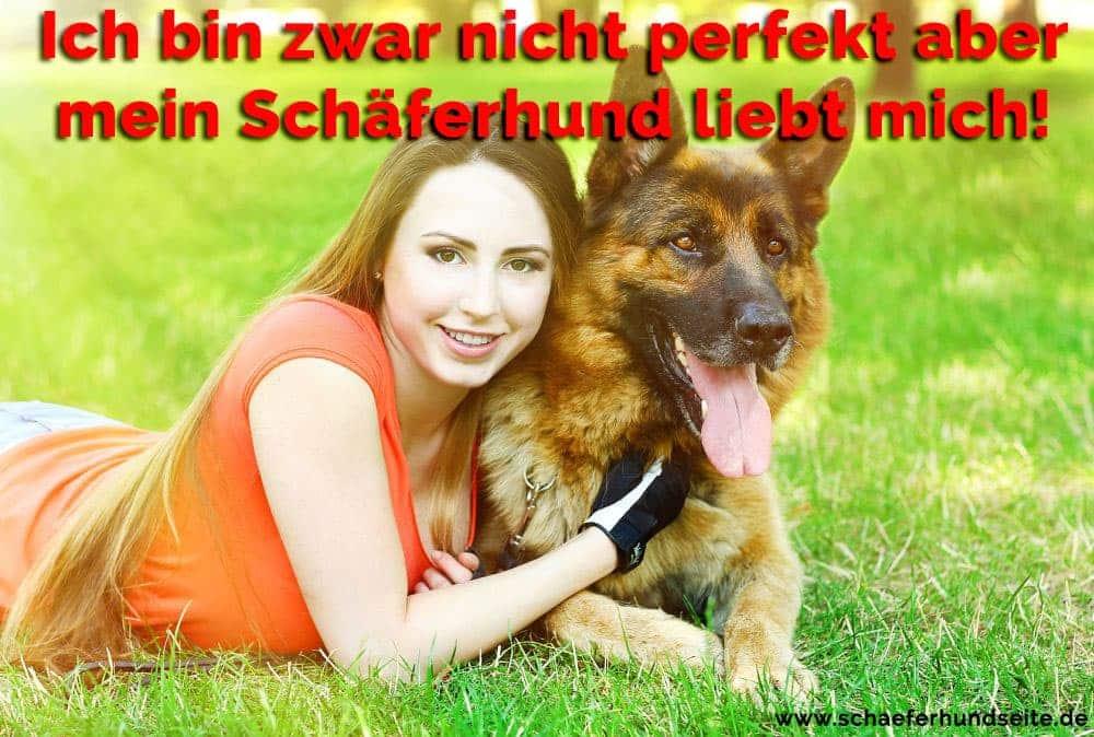 Die Frau umarmt ihren Schäferhund