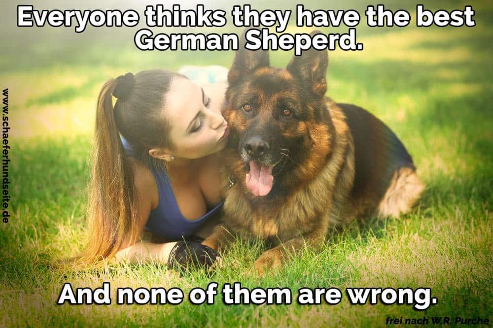 Die Frau küsst ihren Schäferhund