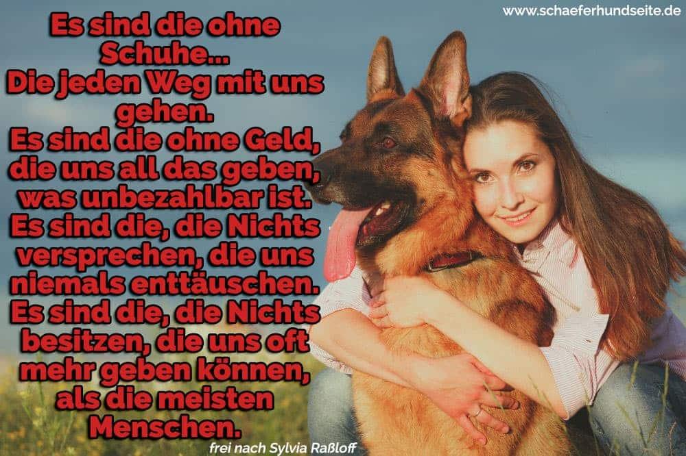 Die Junge Frau umarmt ihren Schäferhund