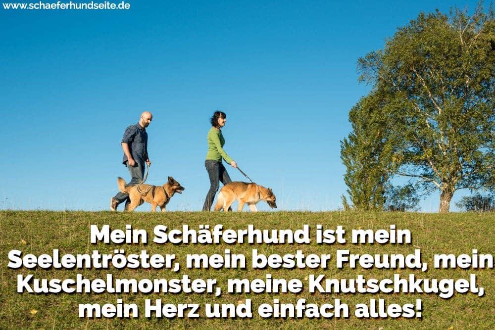 Ein Paar spazieren mit ihren Schäferhund