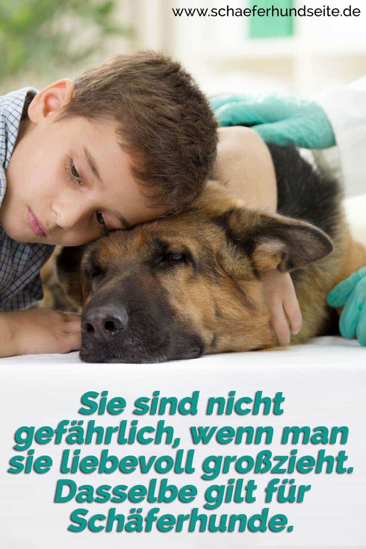 Einen Junge umarmt seinen Schäferhund